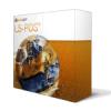 LS-POS-Editionen